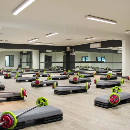 FUNCTIONAL FITNESS CIRCUITS